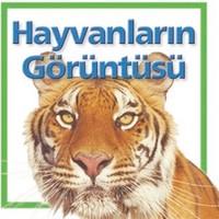 Hayvanların Görüntüsü