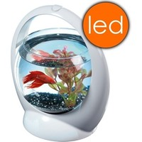 Tetra Betta Ring Led Işıklı Beta Akvaryumu 1,8Lt