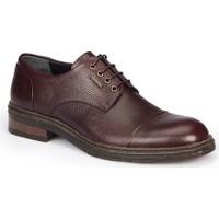 Mercedes Rochus Kahverengi Erkek Deri Ayakkabı