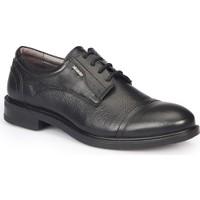 Mercedes Damıan Siyah Erkek Deri Ayakkabı