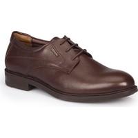 Mercedes Jonas Kahverengi Erkek Deri Ayakkabı
