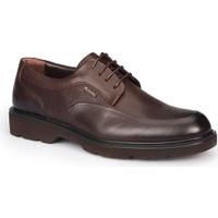 Mercedes Gardner Kahverengi Erkek Deri Ayakkabı