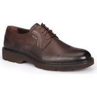 Mercedes Myron Kahverengi Erkek Deri Ayakkabı