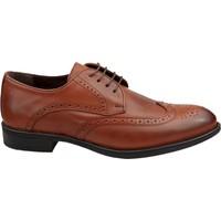 Wolfland 523 01 Erkek Deri Klasik Ayakkabı