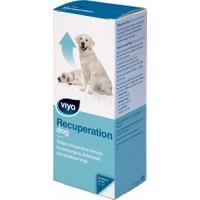 Viyo Recuperatıon Dog
