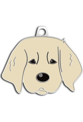 Dalis Pet Tag - Yavru Golden Köpek Künyesi