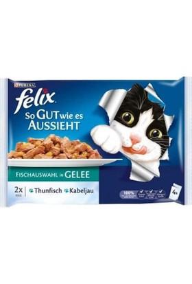Felix Morina Balıklı Ve Ton Balıklı Konserve Kedi Maması 100 Gr (4'lü Paket)