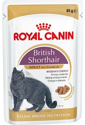 Royal Canin British Shorthair Adult Pouch Yetişkin Kedi Konservesi 85 Gr