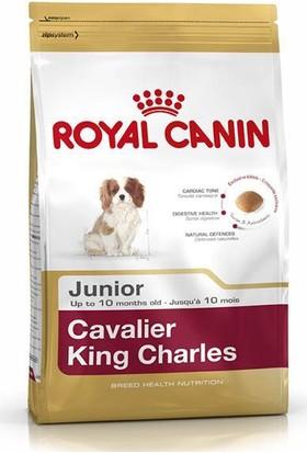 Royal Canin Cavalier King Charles Junior Yavru Köpek Maması 1,5 Kg