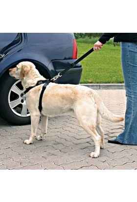 Trixie Köpek Emniyet Kemeri S 30-60 Cm