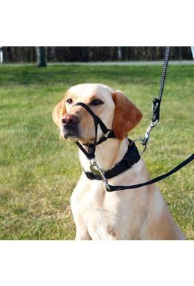 Trixie Top Trainer Uzman Köpek Eğitim Tasması Xl-Kisa 40 Cm