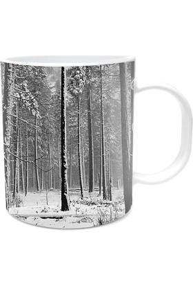Fotografyabaskı Orman Beyaz Kupa Bardak Baskı