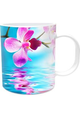 Fotografyabaskı Orkide Çiçekleri Beyaz Kupa Bardak Baskı