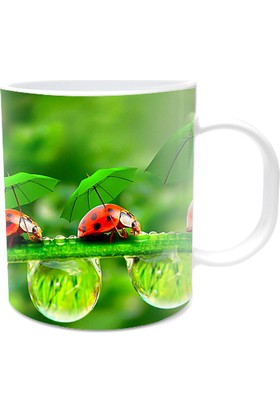 Fotografyabaskı Uğur Böceği Beyaz Kupa Bardak Baskı