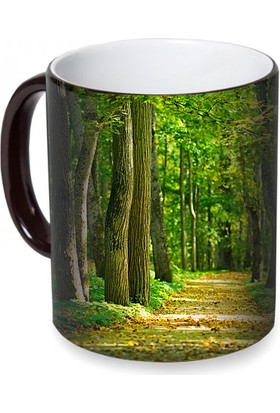 Fotografyabaskı Orman Sihirli Siyah Kupa Bardak Baskı