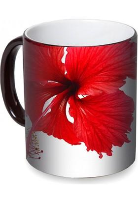 Fotografyabaskı Hibisküs Çiçeği Sihirli Siyah Kupa Bardak Baskı
