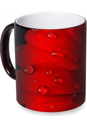 Fotografyabaskı Kırmızı Gül Sihirli Siyah Kupa Bardak Baskı