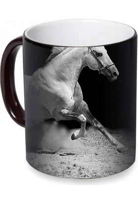 Fotografyabaskı Beyaz At Sihirli Siyah Kupa Bardak Baskı