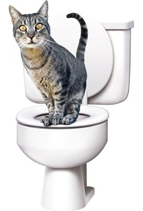 Hergunyeni Citikitty Kedi Tuvalet Eğitim Seti