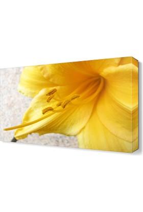 Dekor Sevgisi Sarı Çiçek Canvas Tablo 45x30 cm