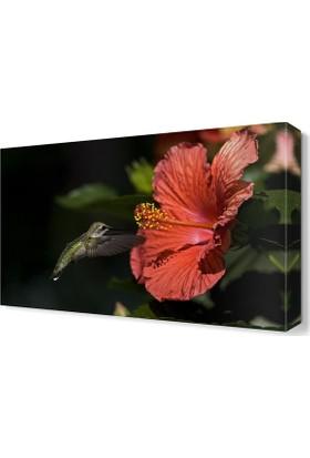 Dekor Sevgisi Kuş ve Çiçek 45x30 cm