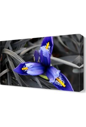 Dekor Sevgisi Mavi Çiçek3 Tablosu 45x30 cm