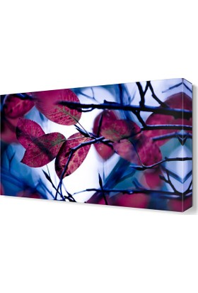 Dekor Sevgisi Pembe Yapraklar Tablosu 45x30 cm