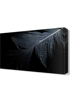Dekor Sevgisi Siyah Tüy Tablosu 45x30 cm