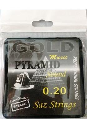 Gold Pyramid 0,20 Uzun Sap Profosyonel Bağlama Teli Takımı