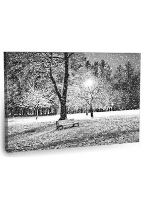 Fotografyabaskı Kışın Park Tablosu 75 Cm X 50 Cm Kanvas Tablo Baskı