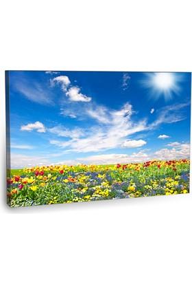 Fotografyabaskı Renkli Çiçekler Tablo 3 75 Cm X 50 Cm Kanvas Tablo Baskı