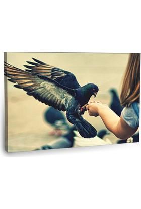 Fotografyabaskı Güvercin Ve Küçük Kız Tablosu 75 Cm X 50 Cm Kanvas Tablo Baskı