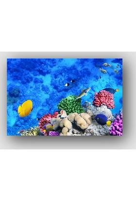 Artredgallery Su Deniz Tablo