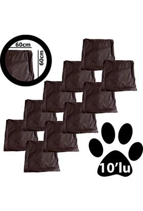 Kullan At Kedi Köpek Minderi 10'lu