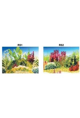 Kw Zone Pls. Poster 48 Cm 15 Mt
