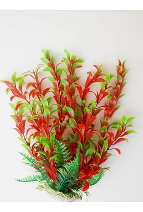 Xiongfa Plastik Bitki 25 Cm