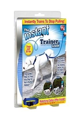 Original Boutique Instant Trainer Leash Köpek Eğitim Tasması