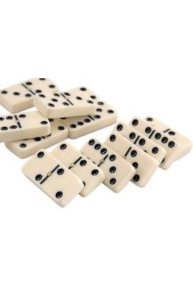 Hobi Eğitim Dünyası Domino Oyun Seti