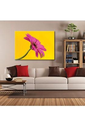 Tablom Pembe Çiçek Kanvas Tablo