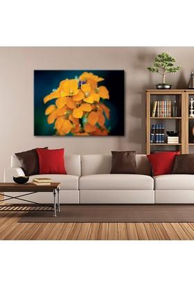 Tablom Turuncu Çiçek Kanvas Tablo