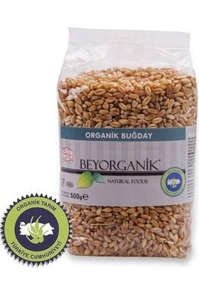 Beyorganik Organik Buğday 500 Gr