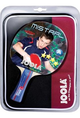 Joola Mistral - Masa Tenisi Raket Seti 1 ITTF Onaylı Raket + 1 Raket Kılıfı