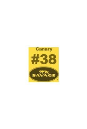 Savage (U.S.A) Stüdyo Kağıt Fon Canary Seamless Paper 135*1100 cm