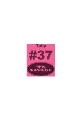 Savage (U.S.A) Stüdyo Kağıt Fon Tulip Seamless Paper 271*1100 cm