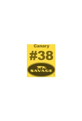 Savage (U.S.A) Stüdyo Kağıt Fon Canary Seamless Paper 271*1100 cm
