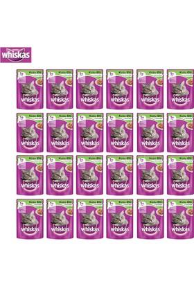 Whiskas Pouch Kuzulu Kedi Maması 100G 24'Lü