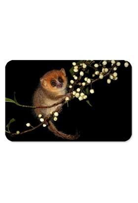 Fotografyabaskı Lemur Dikdörtgen Mouse Pad