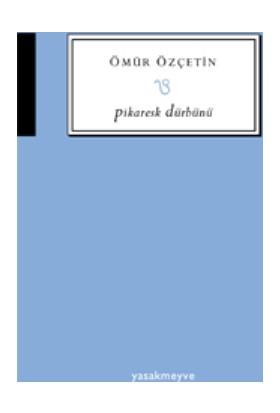 Pikaresk Dürbünü