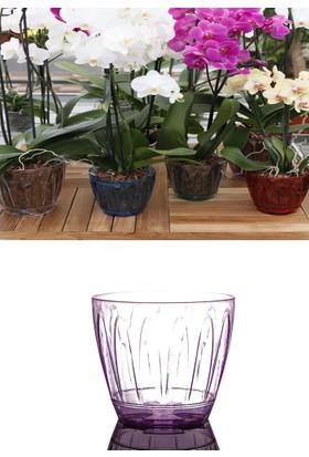Mini Garden Mini Garden Orkide Saksı 0,7 LT