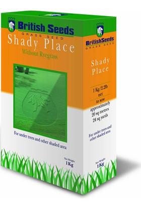 Shady Place Gölge Alanlar için özel ithal Çim Tohumu 1kg